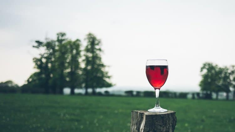 glass of wine in the yard